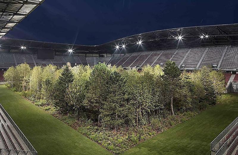 زمین فوتبالی که تبدیل به جنگل شد