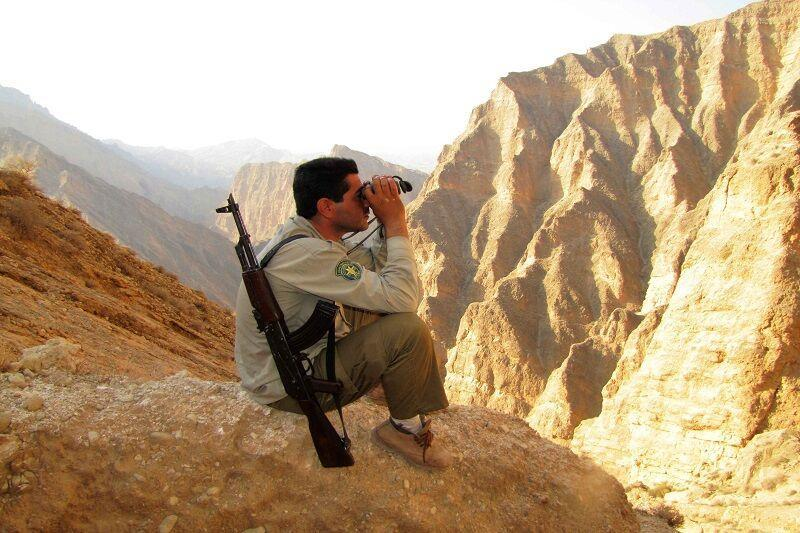 خبرنگاران امنیت حیات وحش بوشهر در پناه محیط بانان کم شمار