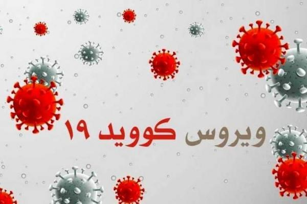 نقش مهم تهویه مطبوع در کاهش انتشار ویروس کووید 19